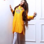 Origins Kurta Collection 2013 For Women 002