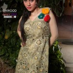 dawood lawn collection 2013 16