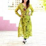Desi Beads Latest Winter Dress Collection 2013-2014 For Women (2)