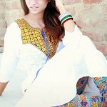 Desi Beads Party Wear Collection 2013 003