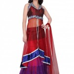 Latest Embroidered Frocks New Collection 2013-2014 For Bridals (7)