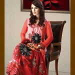 Strawberry Chiffon Collection 2013 For Women 003