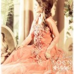 JEUNI Couture Winter Latest Collection 2013 004