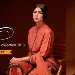 Elegance Tardiest Winter Collection 2013 For Women 1
