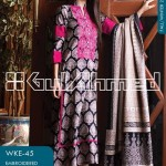Gul Ahmed Latest Winter Dress Collection 2013-2014 Volume 2 for Women (5)