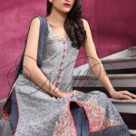 Needlez By Shalimar Stylish Formal Wear Winter Dress Collection 2013-2014 For Women (3)