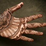 New Henna Designs Collection 2014 003