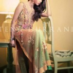 Winter Formals Collection 2013 For Women By Tena Durrani 3