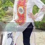 Braahtii Party Wear Winter Dress New Collection 2014 For Women (1)