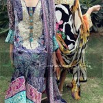 Braahtii Party Wear Winter Dress New Collection 2014 For Women (4)