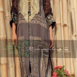 Braahtii Party Wear Winter Dress New Collection 2014 For Women (5)