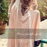 Braahtii Party Wear Winter Dress New Collection 2014 For Women (7)