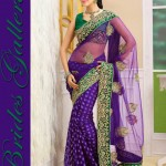 Brides Galleria Latest Stylish Party Wear Indian Sarees 2014 004