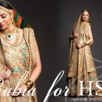 HSY Bridal Wear Dresses Collection 2013-14 002