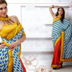 Latest Indian Silk Saree Collection with Blouses 2014 For Women (8)