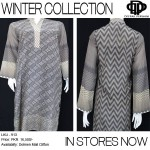 Latest Winter Dresses 2013 For Women By Deepak Perwani 003