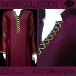 Latest Winter Dresses 2013 For Women By Deepak Perwani 004
