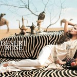 Shehla Chatoor Bridal Latest Dresses Collection 2014 002