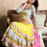 Anamika spring Couture 2014 volume-2 for Women 4
