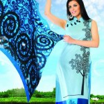 Aramish Exclusive Winter Collection 2014 By B&V 004
