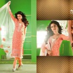 Bhagyashree Indian Actress Party Wear Dresses 2014 for Women 1