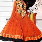 Bollywood Anarkali Choridar Indian Collection 2014 By Kaneesha 003
