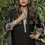 Dhanak Spring Summer Cotton Collection 2014 for Women