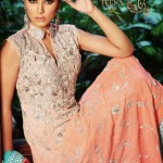 Exclusive Teena by Hina Butt Colorful Party Wear Outfits for Women