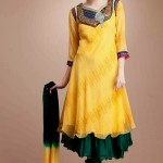 Latest Beautiful Anarkali Suits Collection 2014-2015 For Women (10)