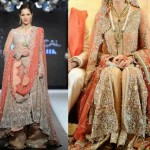 Latest Pakistani Bridal Wear Wedding Dresses New Collection 2014 For Girls (12)