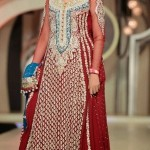 Latest Pakistani Bridal Wear Wedding Dresses New Collection 2014 For Girls (2)