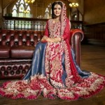 Latest Pakistani Bridal Wear Wedding Dresses New Collection 2014 For Girls (3)
