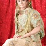 Latest Pakistani Bridal Wear Wedding Dresses New Collection 2014 For Girls (7)