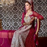Latest Pakistani Bridal Wear Wedding Dresses New Collection 2014 For Girls (9)