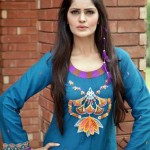 Latest Winter New Dress Collection 2014 for Women By Khanumz (7)