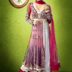 Luxury Indian Women Georgette Formal Wear Collection 2014 001