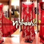 Nakoosh Beautiful Winter Party Wear Dresses Collection 2014 For Women (4)