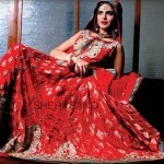Shehrbano Latest Bridal Dresses 2014 005