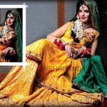 Shehrbano Latest Bridal Dresses 2014 006