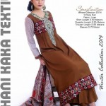 Stylish Winter Wear Dress Collection 2014 For Women By Ghani Textile (2)