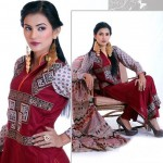 Stylish Winter Wear Dress Collection 2014 For Women By Ghani Textile (3)