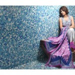 Subhata Designer Embroidered Linen Winter 2014 Collection For Women (6)