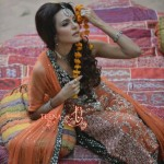 Teena by Hina Butt Party Wear New Year Dresses 2014 For Women (3)