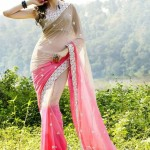 Utsav Indian Latest Saree Collection 2014 003