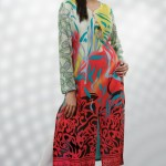 Stitched Pakistani Dresses by Dicha Clothing