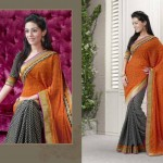 Ayesha Takia Valentine Day Sarees Collection 2014 for Women 3