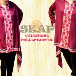 Exclusive Women Wear Valentine Day Collection 2014 by SEAP 1