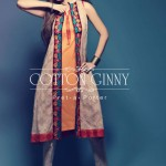 Latest Spring Summer Dresses Collection 2014 For Women By Cotton Ginny (3)