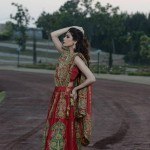 Mehryn Zafar Formal & Party Wear Collection 2014 for Women 2