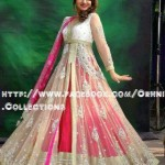 Orhni Boutique Embroidered Gowns Siuts Collection 2014 004